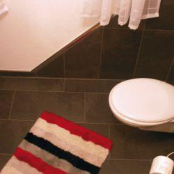 exklusive-fliesengestaltung_toilette-1
